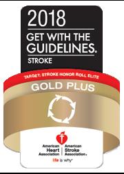 CHH Stroke Gold Plus Target Stroke Honor Roll Elite 2018