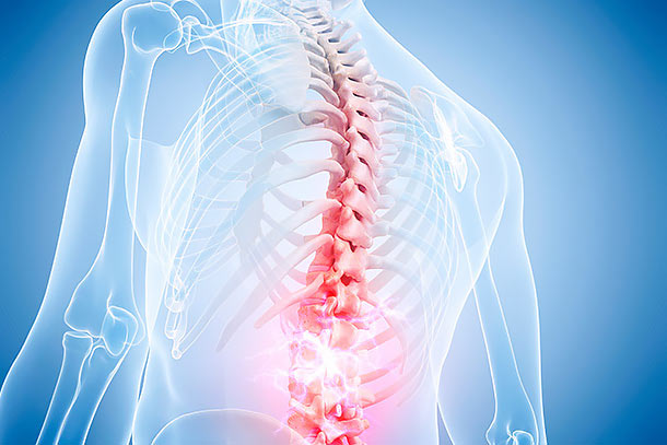 Spine and Neurosurgery Program